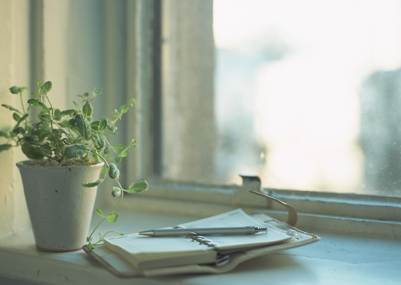 窓辺の写真